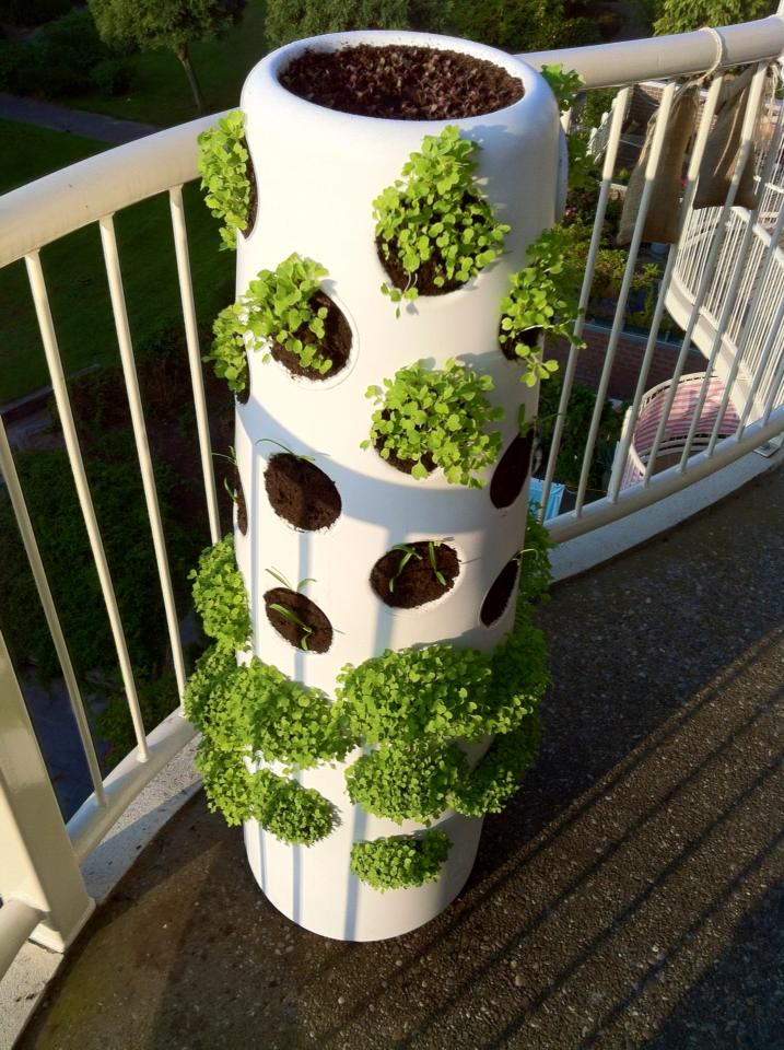winter_Vertical_garden17sep_2
